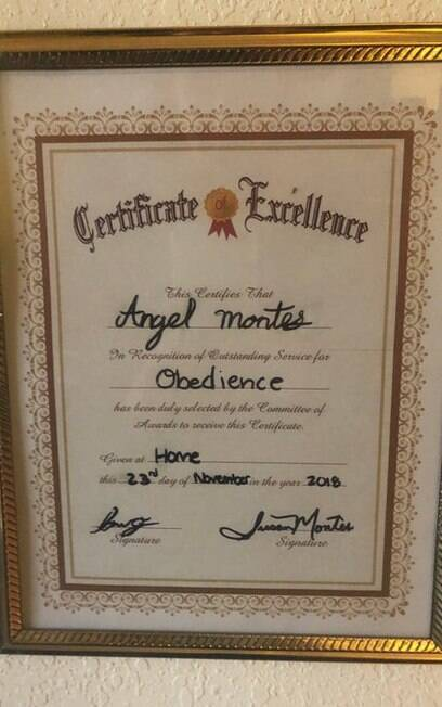 Certificado de Angel